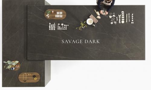 SAVAGE DARK 1